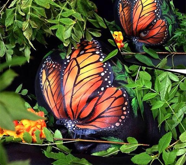 Wiser Oner - Butterflies
