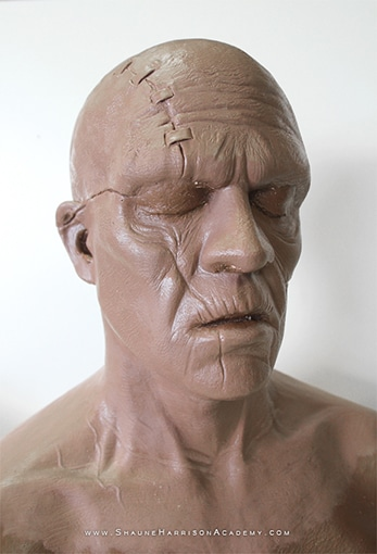 Shaune Sculpt Head